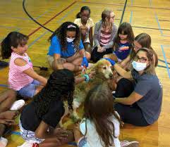 Beesleys Paw Print Therapy Dogs